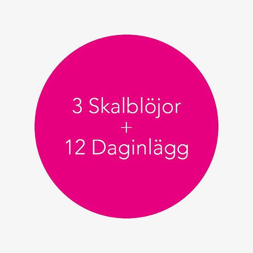 3 Skalblöjor + 12 Daginlägg