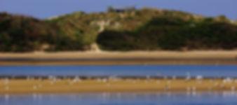 parque-natural-do-litoral-norte-art.jpg