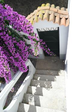 15-escada