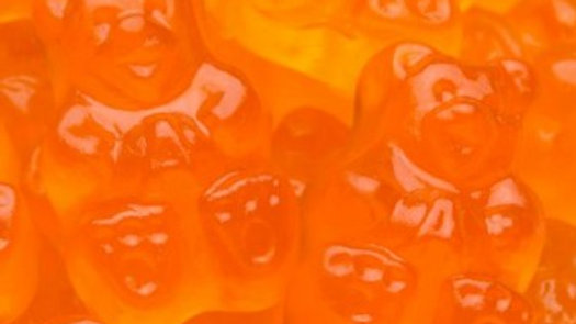 Orange Gummi Bears