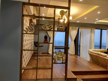Partition in Living Area
