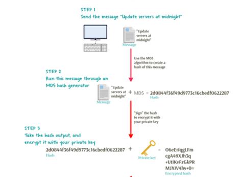 Digital Signature Process and PDF