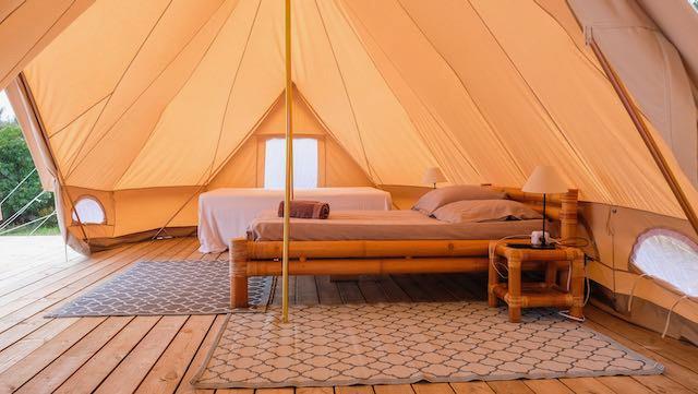 Palm tree bedroom.jpeg