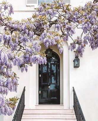 black_closed_door_near_purple_floral_tre