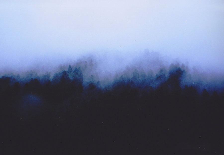 Rainbow forest france.jpg