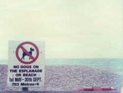 Devon beach, England