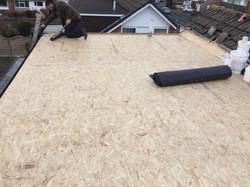 Flat Roof 4
