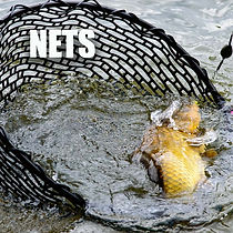 NGT NETS.jpg