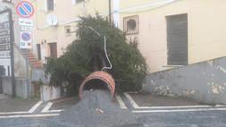 Tortora, alberi di Natale e illuminazioni: Papa chiede più sicurezza