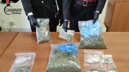 Belsito: marijuana nell'abitazione: un arresto e una denuncia