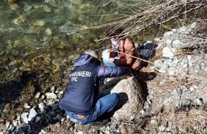 I carabinieri per la tutela del patrimonio culturale recuperano nel fiume Savuto manufatto granitico