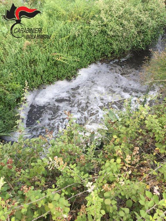 Inquinamento del fiume Trionto a Crosia