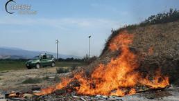 Torano Castello. Combustione illecita di rifiuti