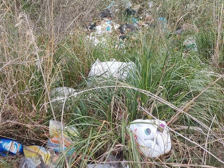 Grisolia, getta spazzatura in un'area verde. Multato