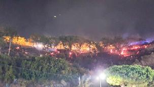 Cetraro, incendio ai piedi dell'ospedale Iannelli. Sul posto tre squadre dei vigili del fuoco VIDEO