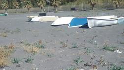 Praia a Mare, il sequestro delle barche anche per tutelare i gigli di mare