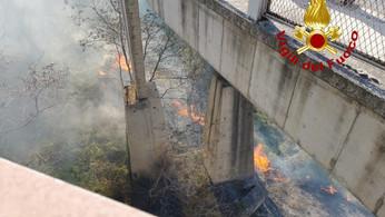 Catanzaro, vasto incendio nell'area del ponte Morandi
