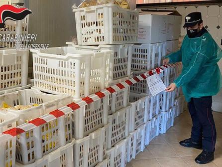Sequestrati 13 quintali di prodotti di panificazione e pasta fresca a San Lorenzo del Vallo
