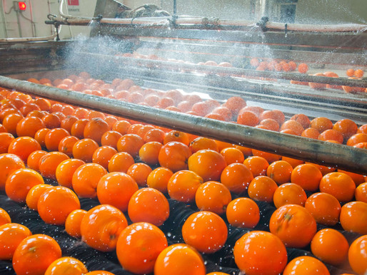 Peracetic Acid used as fruit and vegetable wash benefits
