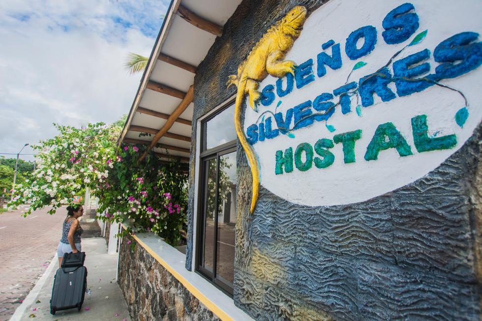 Hostel Street View 2