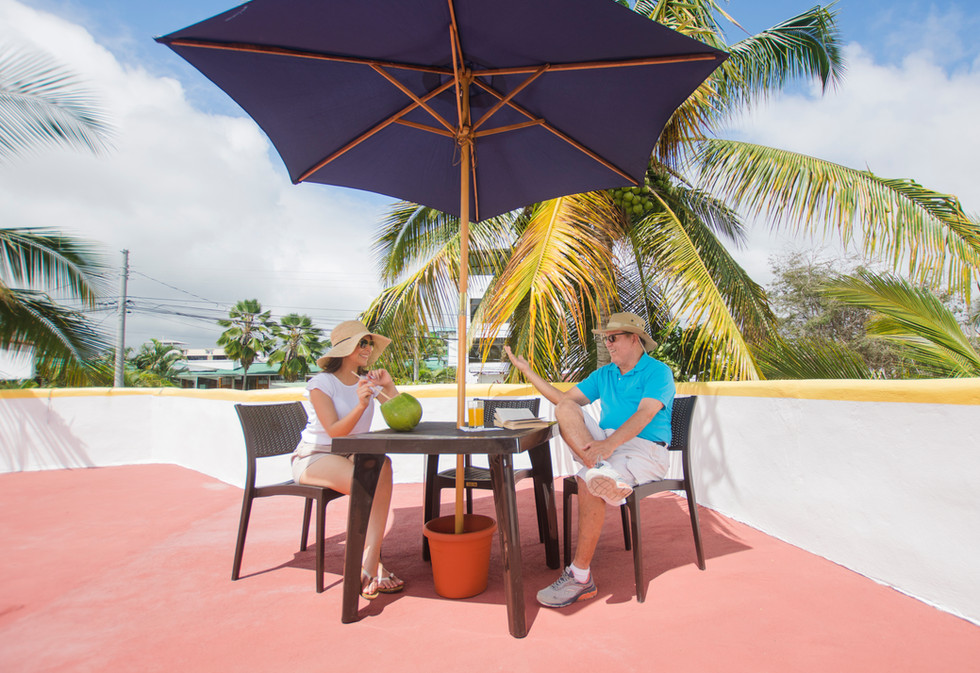 Terrace Rest Table 2