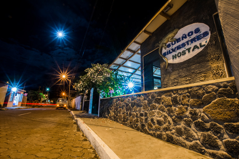Hostel Street Night View