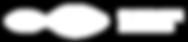 DiscoverMuonio-wide-logo-white_2_300px.p
