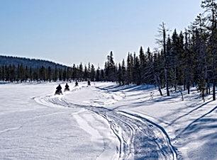 Lappland 2019-02 01124.jpeg