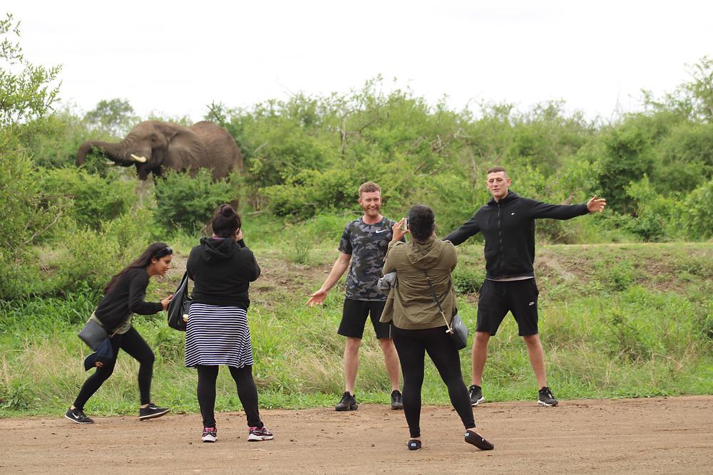 Kruger National Park Tshokwane Picnic Site