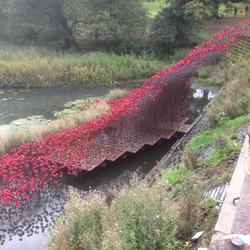 'Wave' Yorkshire Sculpture Park