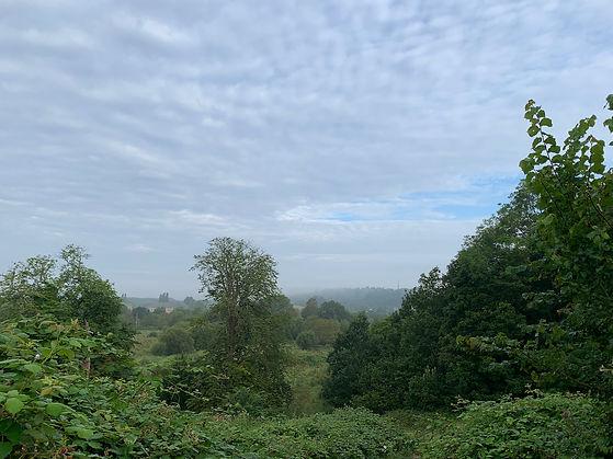 Dagley Lane Shalford view from kissing bridge