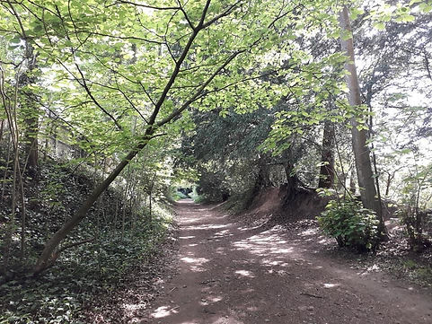 Margaret Morley Dagley Lane 1