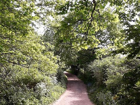 Margaret Morley Dagley Lane 2
