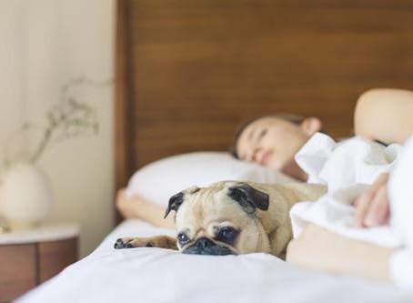 L'importance de bien dormir pour gérer son poids