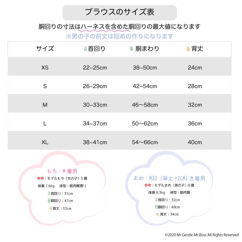 ギャザーブラウス用サイズ表.jpg