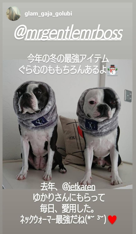 Gajaちゃん&Golubiくん