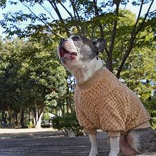 mocomoco-pullover-side-4.jpg