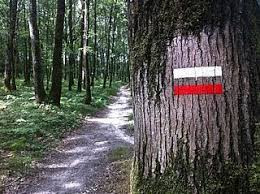 Chemins de randonnées