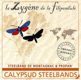 """""""La Zygène de la Filipendule"""" (2007)"""