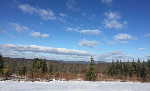 Evan's winter land.JPG