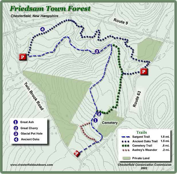 FriedsamTown Forest Map.jpg