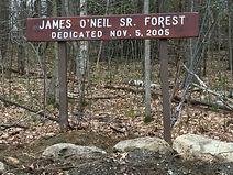 James O'Neil, Sr. Forest