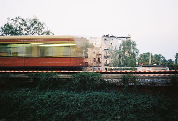 rodrigo_levy_cinematographer_bloom_direc