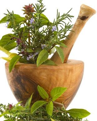 phytotherapie-plantes-medicinales-jpg.jp