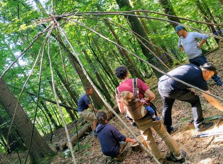 Chantier participatif en forêt