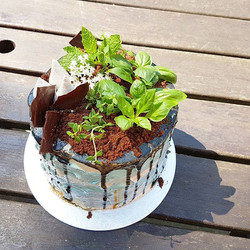 A garden inspired fathers day cake for a keen gardener. ._._
