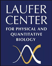 Laufer Center logo.JPG
