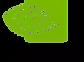 NVIDIA logo.webp