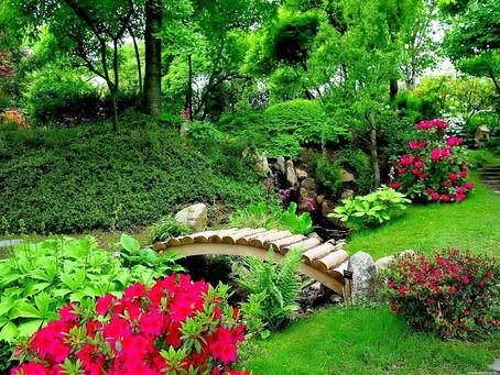 """Набор в бесплатный кружок """"Садоводство и ландшафтный дизайн"""""""