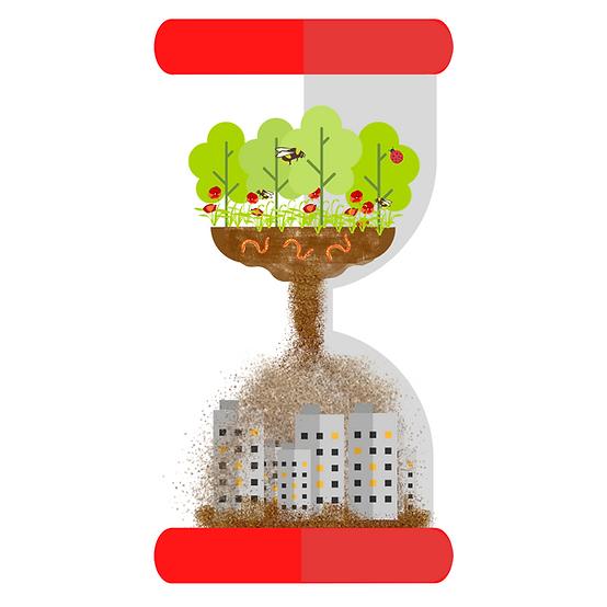 Terrain_cultivable_enjeux_Adopte_ma_toma